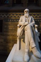 Darwin Statue- Natural History Museum London (nickstone333) Tags: naturalhistorymuseum london museum darwin statue charlesdarwin nikon nikond7100 d7100 atx124afprodx tokinaaf1224mmf4