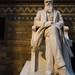 Darwin Statue- Natural History Museum London