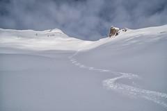 Skispur in den frisch verschneiten Bergen (stefangruber82) Tags: alps alpen winter tirol tyrol snow schnee backcountryskiing skitour berge mountains