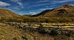 Following Lewis & Clark (The VIKINGS are Coming!) Tags: montana lewisandclark remote prairie animals buffalo elk deer nakedbeauty bare