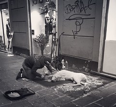 """Street_Artist"" (giannipaoloziliani) Tags: artista capturestreets city downtown art dog streetphotography italy italia genova genoa artist monochrome monocromatico biancoenero blackandwhite nikonphotography nikoncamera nikon sabbia sand"
