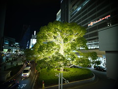 DSCF7599 (kushii) Tags: gfx50s aichi nagoya nightview 24mm14