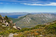 20190113-19-Sentinel Ranges (Roger T Wong) Tags: 2019 australia mtwedge rogertwong sel24105g sony24105 sonya7iii sonyalpha7iii sonyfe24105mmf4goss sonyilce7m3 tasmania bushwalk hike outdoors southwest tramp trek walk