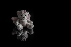 alone bear (englishgolfer) Tags: teddy bear nallebjörn reflection negative space negativyta fs190127 fotosondag nikon d7500 tamron 70200mm fotosöndag nissin di700a