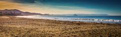 Cayucos Beach  Srnrise (CDay DaytimeStudios w /1 Million views) Tags: beach ca california cayucos cayucousca coastline highway1 landscape morning ocean pacificcoast pacificcoasthighway pacificocean pier water
