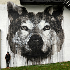 THE GRAY WOLF, wall mural, 2017, Oslo, Norway