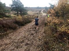 haarlerbergloop 10 km (44)