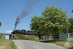 Spring Bloom (R Class Productions) Tags: steam train puffing billy railway smoke locomotive 262 narrow gauge victorian railways forest pbr 7a