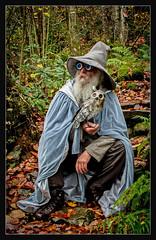 Gandowl the grey (One Eye Coombs) Tags: wizzard humour owl eyes gandalf beard hat