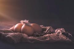 Eggs (Ro Cafe) Tags: backlit contraluz sonya7iii backlight backlighting eggs feather dark darkmood setup stilllife nikkormicro105f28