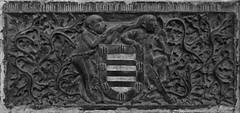 à poil (2) (canecrabe) Tags: singe chaine armes blason héraldique écu support femme velu poil avila cathédrale pedrodevalderrábano sépulture tombeau chanoine