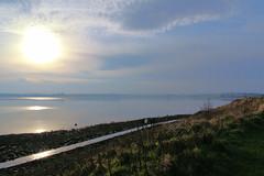 Islandhill (John D McDonald) Tags: islandhill newtownards comber strangfordlough countydown codown down northernireland ni ulster geotagged landscape seascape coast coastal shore sea sun contrejour ards