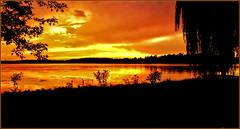 Sunset Silhouettes (Bob's Digital Eye 2) Tags: bobsdigitaleye bobsdigitaleye2 border clouds dusk flicker flickr glowing lake lakesunset lakescape outdoor silhouettes skies sky sunset sunsets trees laquintaessenza lakesunsets