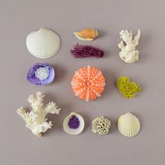 Felt & Bead Sea Urchin Brooch (hine) Tags: seaurchin felt feltsculpture fibreart craft handmade hinemizushima photography