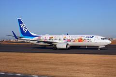 JA85AN_HND_160119_KN_235 (JakTrax@MAN) Tags: ja85an tohoku flower jet hnd rjtt haneda tokyo boeing 737 b737 b737800 738800 738 73h ana all nippon airways airport