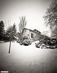 The shelter (DelioTO) Tags: 4x5 blackwhite canada d23 f175 fomapan100 garden landscape ontario panoramic pinhole snow toned trails winter woods