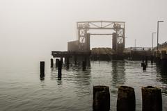 PR in Fog (5 of 102).jpg (Globalbirder) Tags: sfbay california bayarea landscape pointrichmond ferrypoint travel cityscape fog weather usa globalbirder