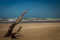 Praia (rodrigo_fortes) Tags: praia beach barreirinhas maranhão paisagem landscape céu areia sky