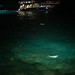 Manta dinining Rays on the bay Kailua Kona Big island Hawaii