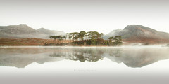 Pine Island tranquil (pixellesley) Tags: connemara pineisland water lough still tranquil dawn morning mist mountains island longexposure slow shutter fineartphoto lesleygooding irishrepublic