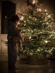 Merry Christmas (agirygula) Tags: christmas christmastime boy teddy eve christmaseve waiting for santa santaclaus presents christmastree christmaslights
