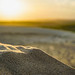 Bokeh of Sand with a Sunset in the Background in Mui Ne