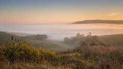sea of mist (Emma Varley) Tags: sunrise valley mist inversion beauty warmth landscape bury westsussex