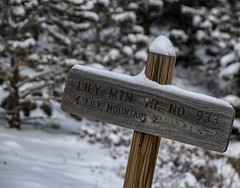Trail No. 933 (noname_clark) Tags: rockymountainnationalpark outdoor hike snow lillymountain sign post wood