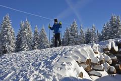 """log skiing"" (t.horak) Tags: logs ski skiing boy children ready blue white snow pile trees clubs"