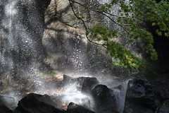 The Basin of A Waterfall (seiji2012) Tags: 福島県 猪苗代町 達沢 滝つぼ 逆光 飛沫 fukushima plunge basin splash rock water