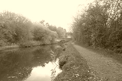 Towpath at Lower Greenshall Lane.  (Peak Forest Canal) October 2018 (dave_attrill) Tags: peakforest canal newmills lowergreenshalllane towpath peakdistrict derbyshire october 2018 sepia monochrome