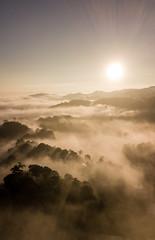 Amanecer Noviembre (edwin6vasquez) Tags: lanscapes paisajes amanecer shutterguatemala inguat guatemala visitguatemala guatemalatrasmilente turismoguatemala sanjuansac mavicpro dji loma alta neblina nubes