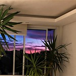 Da Janela do meu quarto / Of the Window of my room. thumbnail