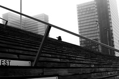 The crouching man (pascalcolin1) Tags: paris13 bnf homme man accroupi crouching marches steps brouillard rampe frame photoderue streetview urbanarte noiretblanc blackandwhite photopascalcolin 50mm canon50mm canon fog