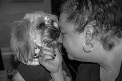 My love and our dog #nikonD70s (hocivic95) Tags: d70s nikond70s nikon bw blackandwhite family mylove love dog