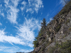 Shredded Clouds, Blue Ridge Parkway, North Carolina (netbros) Tags: blueridgeparkway northcarolina shreddedclouds poundingmilloverlook loneevergreen netbros internetbrothers