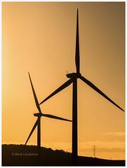 Golden Blades (Mark Lindstrom) Tags: wind turbines farm sunrise siloette silhouette green energy electricty generation northlincolnshire olympus em1mk2 40150pro landscape