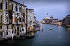 Canale Grande (Michelecimitan) Tags: michelecimitan canalegrande venezia