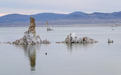 20140123_mono_lake_012 (petamini_pix) Tags: monolake california tufa lake reflection landscape water