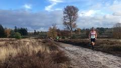 haarlerbergloop 10 km (29)