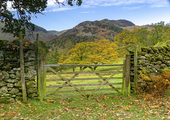 Autumn Colours (l4ts) Tags: landscape cumbria lakedistrict patterdale gate drystonewalls autumn autumncolours