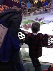 "2018-03-24-to-30-minnesotta-to-see-adam-and-sara-curl-with-family-aquarium-9_31076027788_o • <a style=""font-size:0.8em;"" href=""http://www.flickr.com/photos/109120354@N07/45305669495/"" target=""_blank"">View on Flickr</a>"