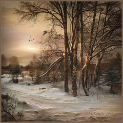 Evening in the forest. (odinvadim) Tags: iphoneart landscape iphoneonly winter iphonex iphoneography specialist mytravelgram distressedfx painterlymobileart iphone snapseed evening travel artist frost textured textures icolorama