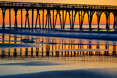 Myrtle Beach Morning Orange (matthewkaz) Tags: myrtlebeach sun sunrise sky myrtlebeachstatepark statepark pier myrtlebeachstateparkpier myrtlebeachpier silhouette birds ocean atlanticocean water waves reflection reflections beach sand shore shoreline coast coastline southcarolina sc 2017