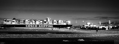 collision  course (MAICN) Tags: 2018 shif wasser mono sw nordsee wattenmeer schiff bw ship blackwhite monochrome strand lowtide schwarzweis ebbe beach boat einfarbig water northsea cuxhaven