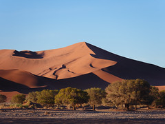 P1107492-LR (carlo) Tags: namibia panasonic dmcg9 g9 africa desert deserto landscape africanlandscape sossusvlei