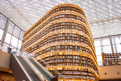 brown and yellow wooden rack. Starfield Library, Seoul, South Korea