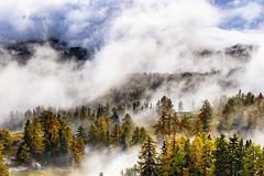 Sweet home.... (Fabrice Le Coq) Tags: vert paysages landscape montagne suisse valais cransmontana fabricelecoqfoto