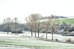 The first snow of this winter (Claudia G. Kukulka) Tags: snow schnee winter fields felder trees bäume landscape landschaft