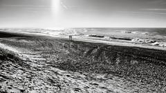 Beach View (Poul-Werner) Tags: bwtrix blackandwhitephotos denmark klegod 53mm beach dune family ocean sea shadow sunlight